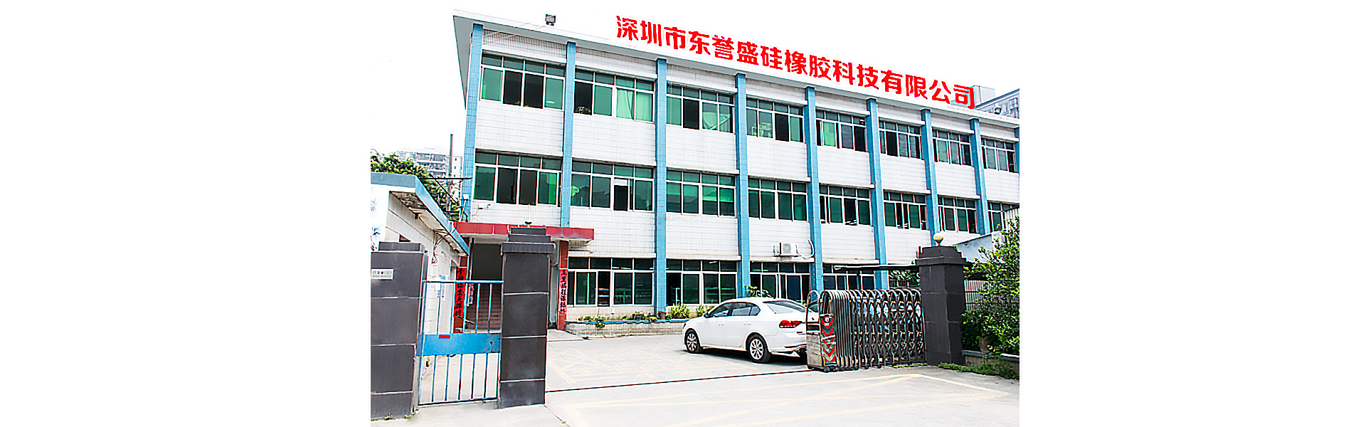 Shenzhen Dongyusheng Silicone&Rubber Technology Co., Ltd